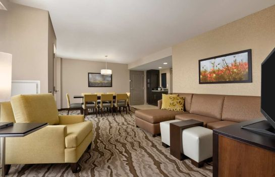 Suite Embassy Suites by Hilton Chattanooga Hamilton Place