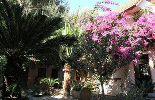 Garden Olive Tree Cottages