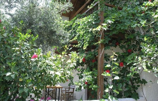 Terrace Olive Tree Cottages