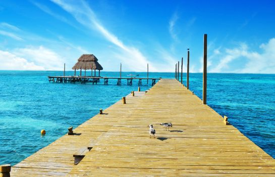 Umgebung Mia Reef Isla Mujeres - All Inclusive