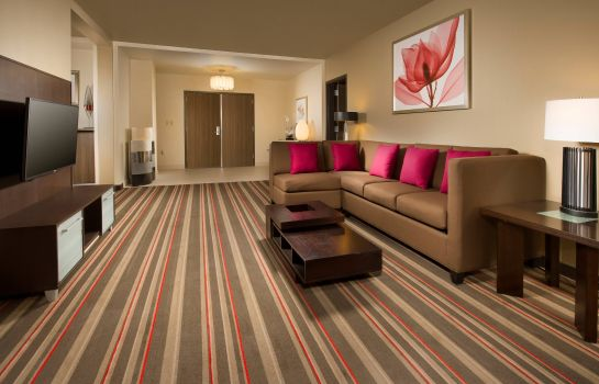 Suite Courtyard Dallas DFW Airport North/Grapevine