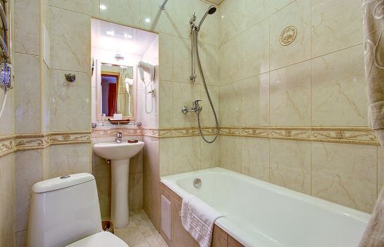 Single room (standard) Davidov Guest House