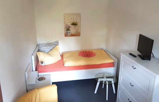 Double room (standard) Luisenstube Pension