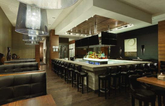 Hotel bar RADISSON HOTEL AND CONF CENTER