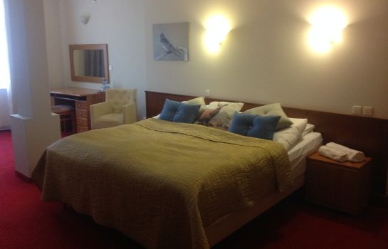 Double room (standard) Villa Castello