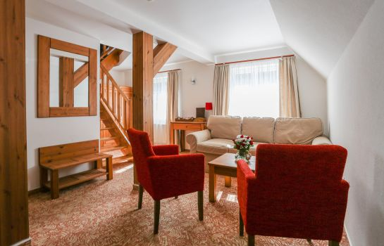 Junior Suite Hotel Mikulasska Chata