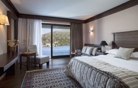 Junior Suite Grand Forest Metsovo