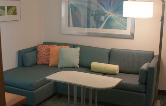 Zimmer SpringHill Suites Corpus Christi