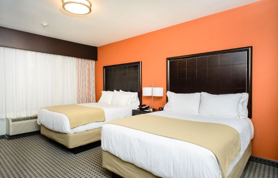 Zimmer Holiday Inn Express & Suites AUSTIN NW - ARBORETUM AREA