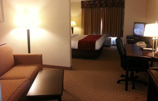 Chambre individuelle (standard) Comfort Suites Mahwah - Ramsey