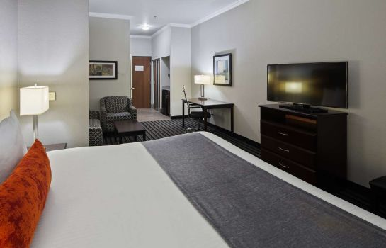 Suite Best Western Plus Austin Airport Inn & Suites