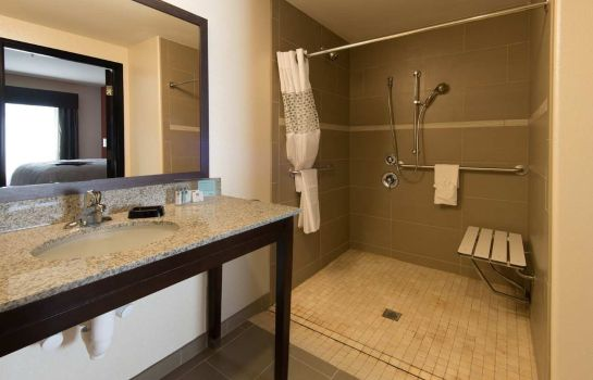 Zimmer Hampton Inn - Suites Albuquerque North-I-25 NM