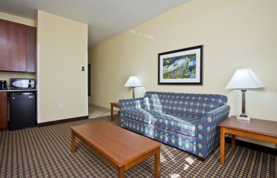 Suite Holiday Inn Express & Suites DENVER EAST-PEORIA STREET