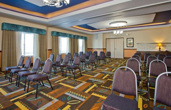 Conference room Holiday Inn Express & Suites DENVER EAST-PEORIA STREET