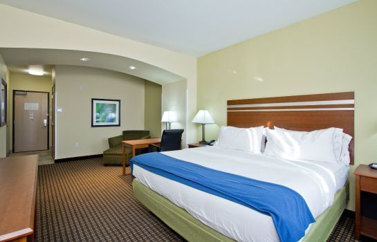 Room Holiday Inn Express & Suites DENVER EAST-PEORIA STREET