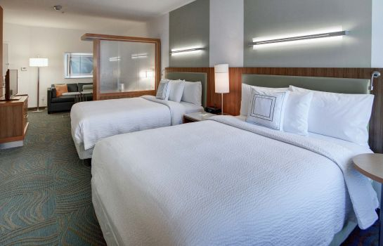 Kamers SpringHill Suites Dallas Plano/Frisco