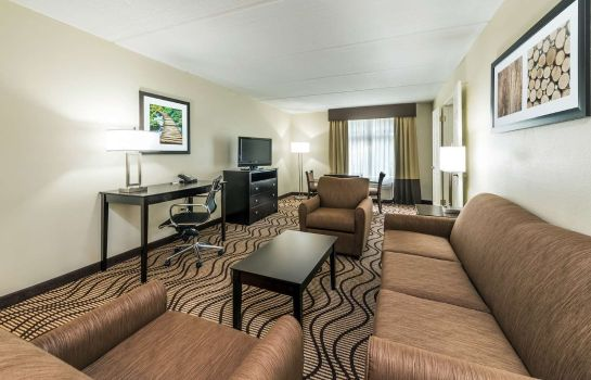 Suite La Quinta Inn & Suites by Wyndham Tampa North I-75