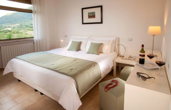 Double room (standard) Hotel Green Park Madama SPA & WELLNESS