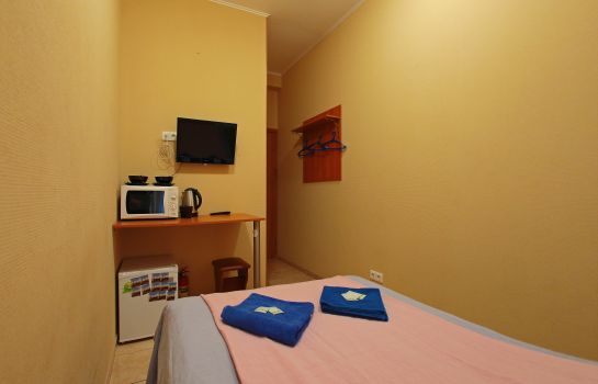 Double room (standard) Samsonov on Ligovsky 48