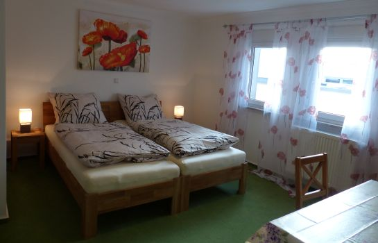 Double room (standard) Sleep-In Brettach
