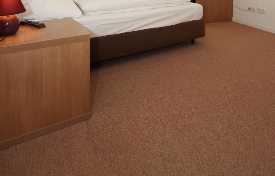 Double room (standard) Apartment Hotel am Sand