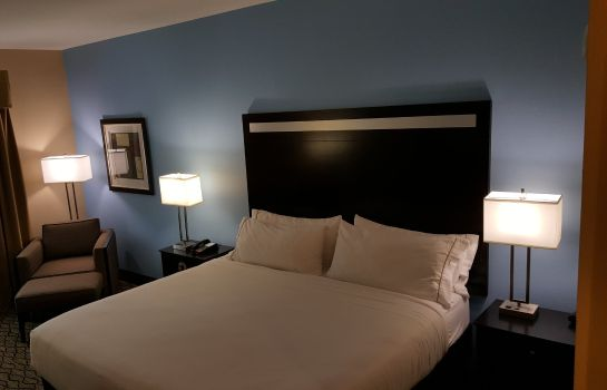 Room Holiday Inn Express & Suites ATASCOCITA - HUMBLE - KINGWOOD