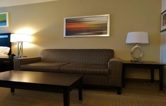 Zimmer Holiday Inn Express & Suites MONTGOMERY