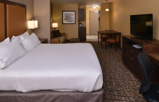 Zimmer Holiday Inn Express & Suites PAGE - LAKE POWELL AREA