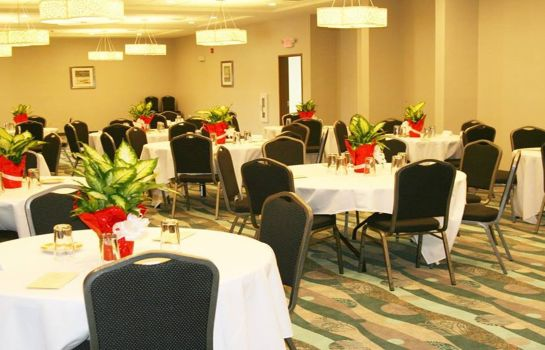 Conference room Holiday Inn GUIN