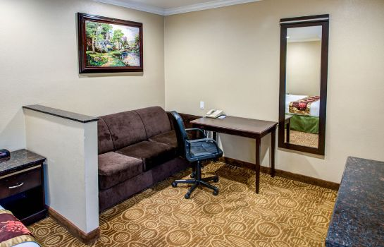Info Rodeway Inn San Diego Near Qualcomm Stadium