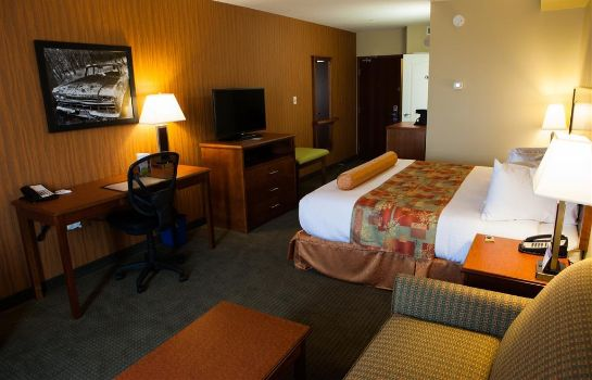 Suite Best Western Plus Service Inn & Suites