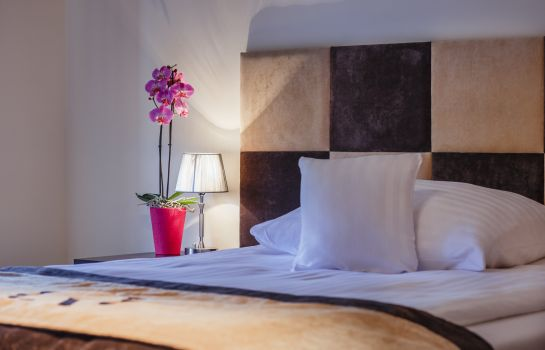 Single room (standard) Boutique Hotel's