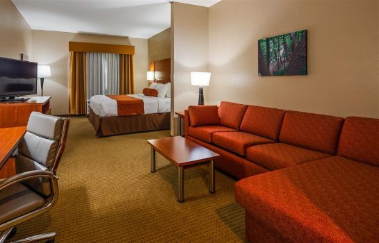 Habitación Best Western Plus Finger Lakes Inn & Suites
