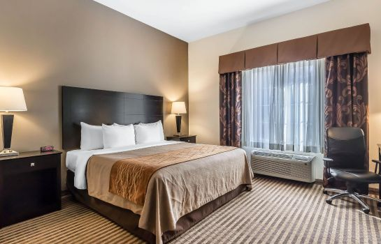 Suite Comfort Inn and Suites near Bethel Colle