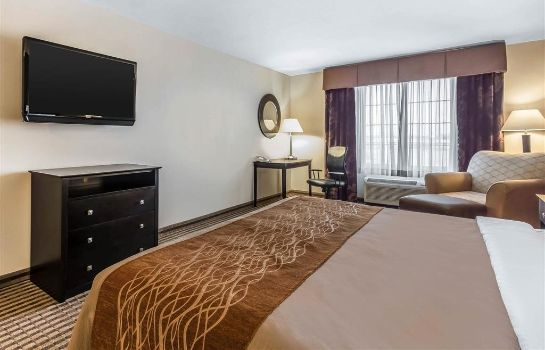 Room Comfort Inn and Suites near Bethel Colle