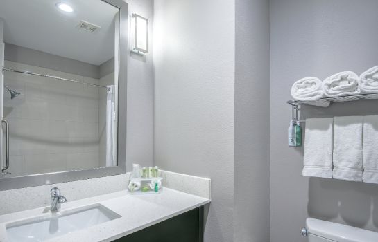 Zimmer Holiday Inn Express & Suites HOUSTON NORTH - IAH AREA
