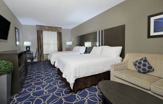Kamers Holiday Inn Express & Suites HOUSTON NORTH - IAH AREA