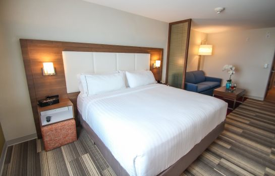 Suite Holiday Inn Express & Suites MIAMI AIRPORT EAST