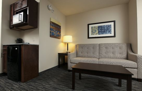 Suite Holiday Inn Express & Suites OMAHA SOUTH - RALSTON ARENA