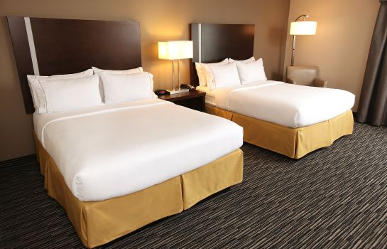 Chambre Holiday Inn Express & Suites OMAHA SOUTH - RALSTON ARENA