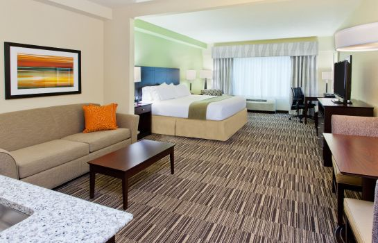 Suite Holiday Inn Express & Suites HUNTSVILLE WEST - RESEARCH PK
