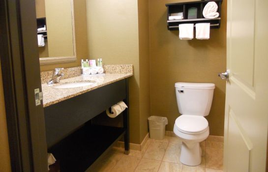 Zimmer Holiday Inn Express & Suites GREENSBURG
