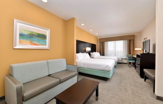 Zimmer Holiday Inn Express & Suites AUSTIN SOUTH