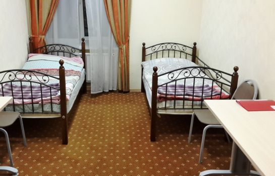Double room (standard) Comfort Park Hostel