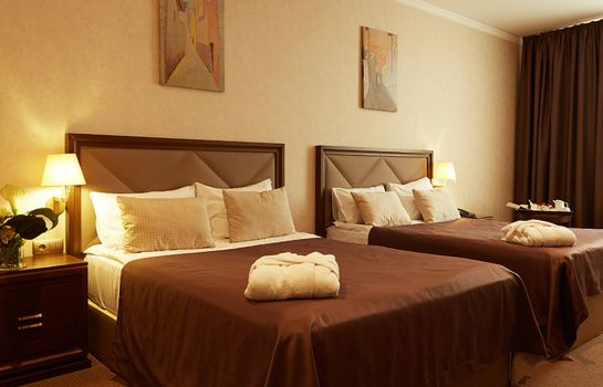 Chambre double (standard) SK Royal Hotel Tula