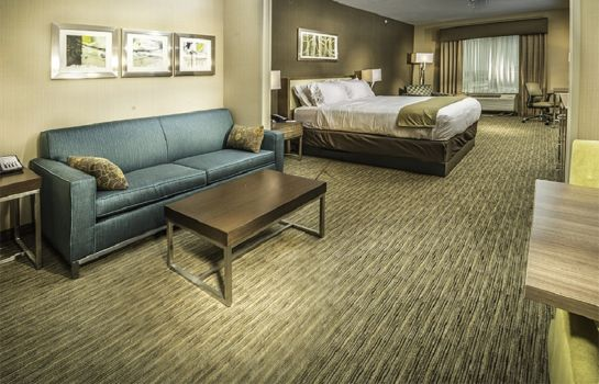 Suite Holiday Inn Express & Suites SALT LAKE CITY SOUTH - MURRAY