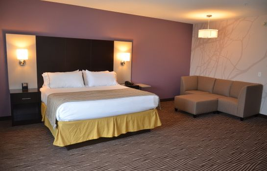 Habitación Holiday Inn Express CHEEKTOWAGA NORTH EAST