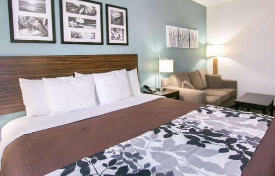 Suite Sleep Inn and Suites Austin North - I-35