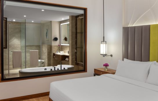 Room Radisson Blu Plaza Mysore