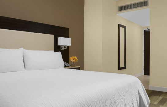 Chambre Hilton Garden Inn New York-Times Square Central